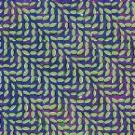 Animal Collective ‐-Review‐-