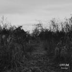 OVUM ‐‐Review‐‐